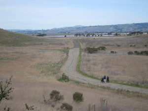 "East bay area ""Coyote Hills Regional Park """